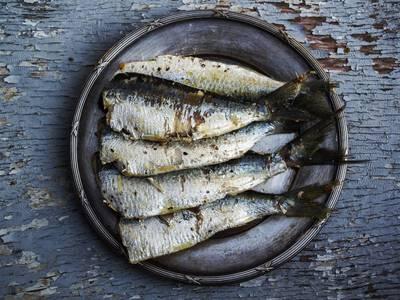 Thumb sardines 1489630 1920
