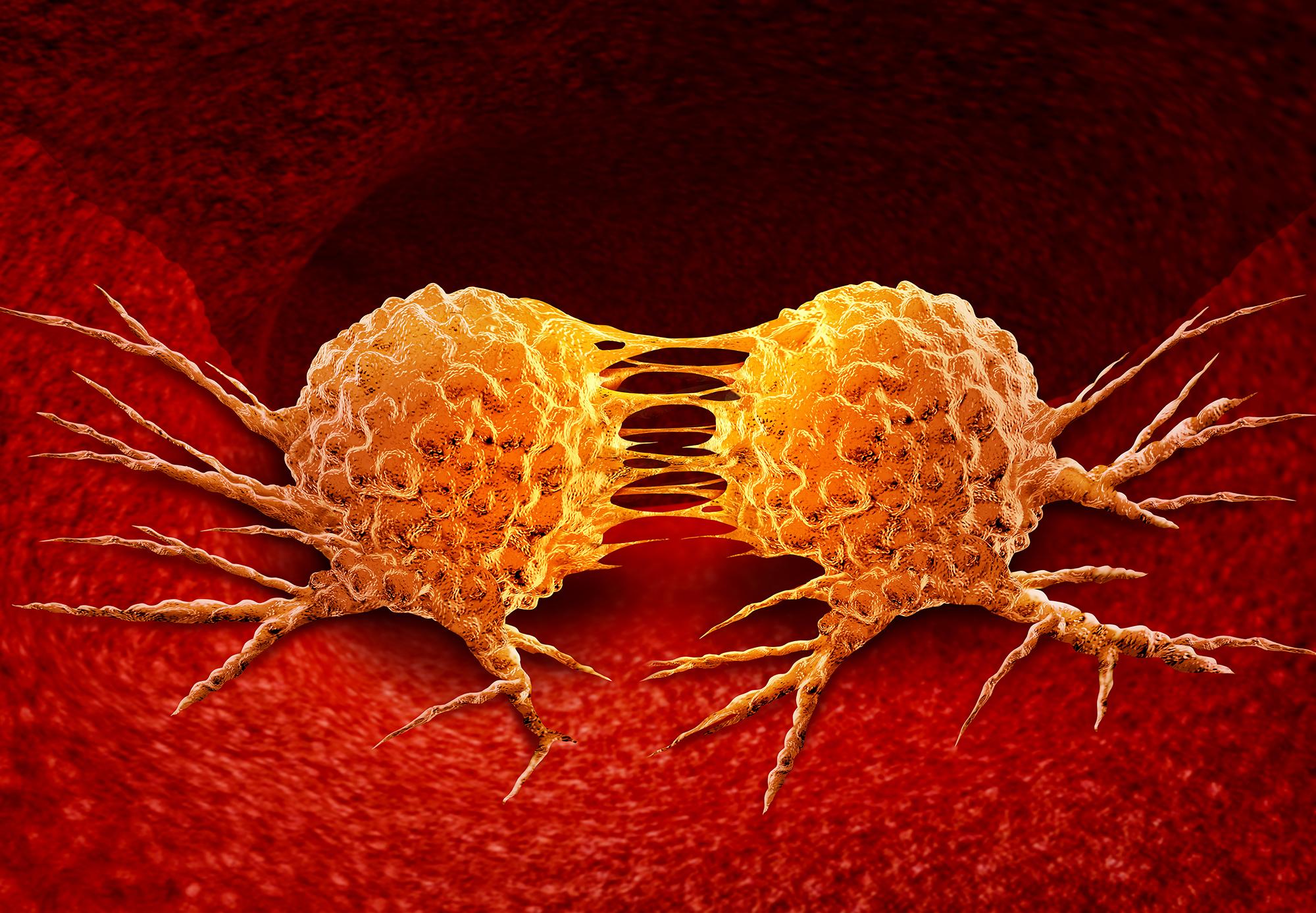 Cancro e Farmaci: quale situazione e quali prospettive? | SIF Magazine